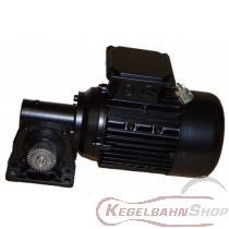 Drehstromgetriebemotor Vollmer NP 230/400V 50 HZ